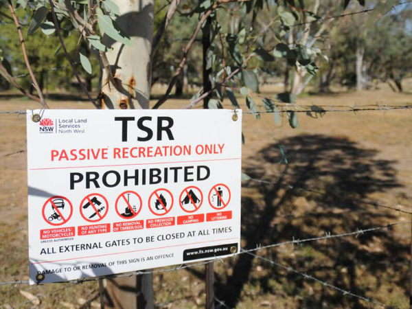 LLS: No camping on travelling stock reserves  | AlburyCity